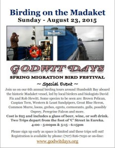 Birding on the Madaket 2015 flyer