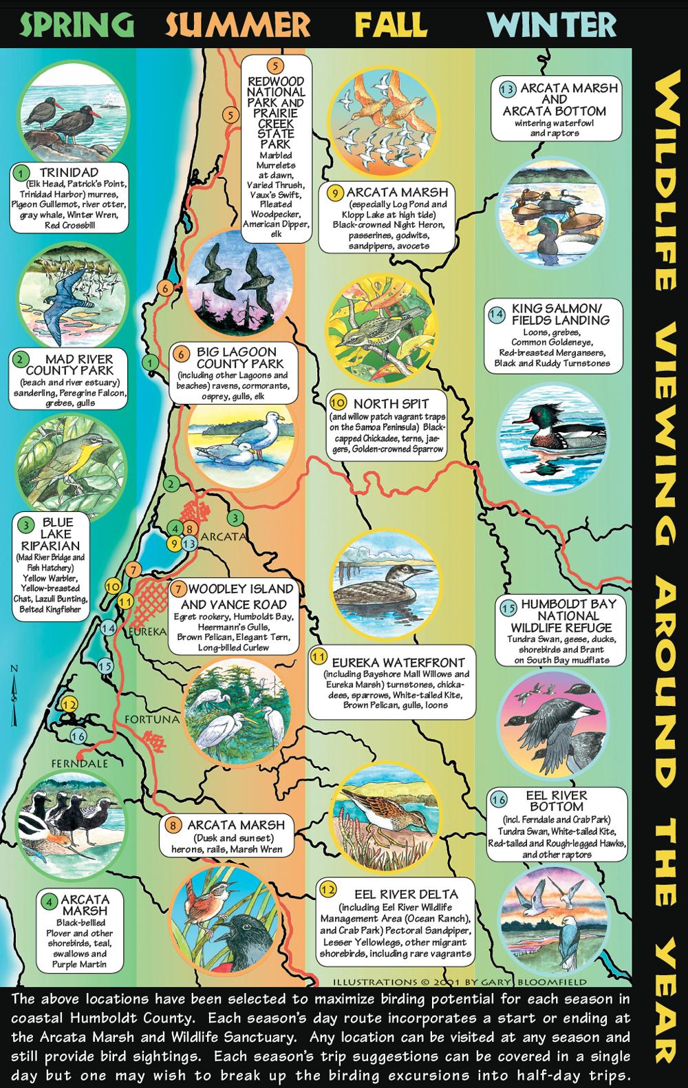 Brochure2_Birding1000