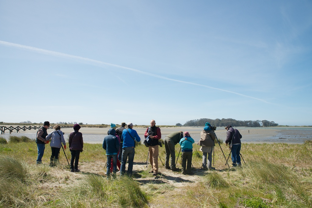 Birders at Elk River